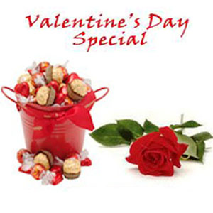 ... & ferrero rocher in Metal bucket and a single rose to Bangalore